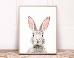 rabbit prints bunny print etsy