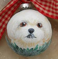 1054 best christmas images on pinterest bichon frise bichons