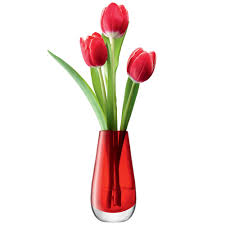 Acrylic Flower Vases Great Ideas Of Acrylic Vases Home Design By John