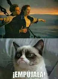 Grumpy Cat Coma Meme - pin by paqui no te importan on chistes y memes de pelis y series