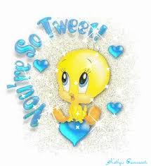 tweety bird gif u0026 share giphy