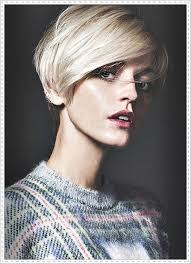 short haircuts to cut yourself mclennanphoto lucinda taffs fm models styling by tara pixie