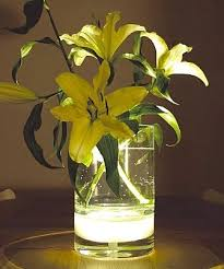 Lights In Vase 142 Best Centrepiece Ideas Images On Pinterest Centrepiece Ideas