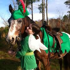 Link Halloween Costumes 25 Horse Costumes Ideas Horse Halloween
