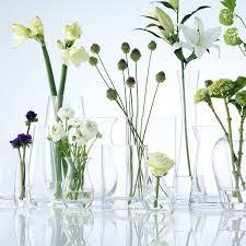 stem flowers lsa international flower single stem vase clear 17 cm high
