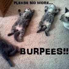 Burpees Meme - funny burpee quotes popsugar fitness