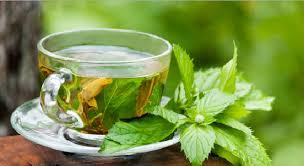 Teh Mint peppermint tea manfaat rutin mengkonsumsi teh peppermint