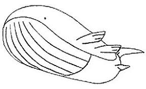 pokemon coloring pages wailord pokemon coloring pages coloringpagesonly com