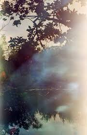 developing color film at home when a mistake becomes art u2013 what