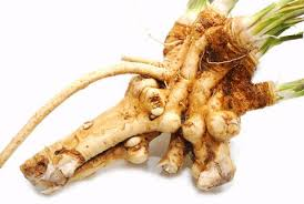 Root Vegetable Allergy - blog whole health talk tagged