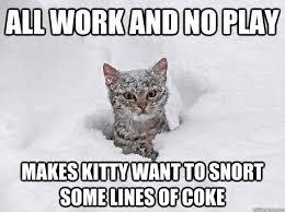Cat Cocaine Meme - cocaine cat memes quickmeme