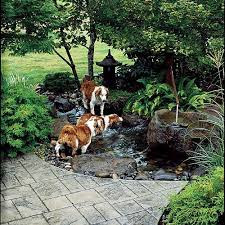 Water Features Backyard by 202 Best Backyard Ponds And Water Features Images On Pinterest