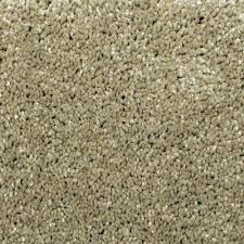 home decorators collection carpet sample gracious manner ii