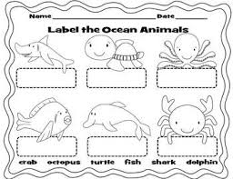 71 best kindergarten ocean unit images on pinterest ocean unit