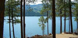 cabin rentals vallecito lake southwest colorado