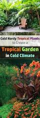 the most poisonous plants in australia hipages com au 154 best bali garden ideas images on pinterest landscaping