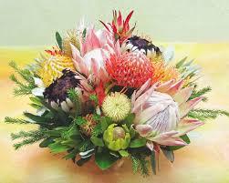 november seasonal flowers seasonal please inquire protea basket b a long lasting