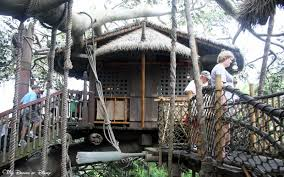 Real Treehouse Swiss Family Robinson Treehouse