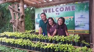 jaya secret garden a diversified organic backyard farm