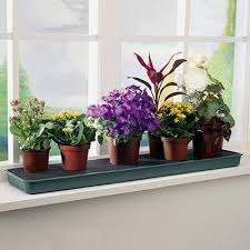 self watering plants self watering windowsill plant tray gardening trays greenhouse