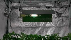 virtual sun grow light reviews vswr6000 virtual sun winged reflector grow light hood youtube