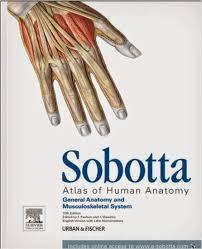 Human Anatomy Images Free Download Free Download Medical Ebooks Sobotta Atlas Of Human Anatomy 15th