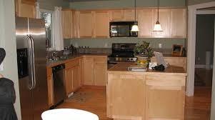 Kitchen Cabinet Paint Colors Ideas by Best Kitchen Paint Colors Selection Homes Alternative 28633