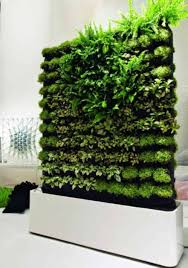 vertical vegetable gardens stunning vertical gardening grow up