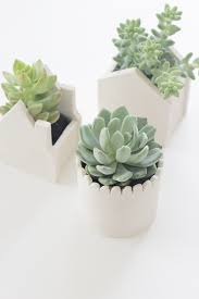 cute pots for plants diy handmade clay pots say yes