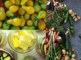 preserving garden vegetables home design inspirations