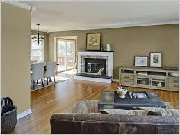 Cozy Living Room Colors Interior Design Color Rules Prestigenoir Inside Color Suggestion
