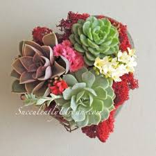 succulent wedding favors succulent wedding favors succulents