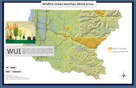 Wildfire Carson Wa by Seattle And King County Ready