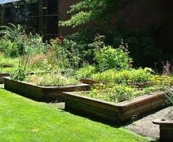 wyrtig designing a medieval garden