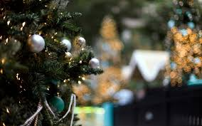 tree winter lights new year 6998590