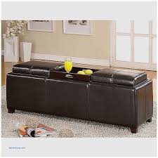 Unique Storage Ottoman Storage Benches And Nightstands New Storage Ottoman Bench With