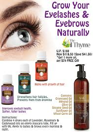 essential oils for hair growth and thickness lavender in mascara put 2 drops of lavender young living essential