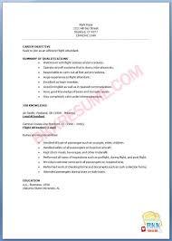 Resume Samples For Flight Attendant Position by American Airlines Flight Attendant Sample Resume Agribusiness Best