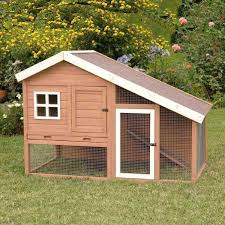 precision pet cape cod chicken coop or rabbit hutch petco