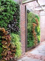 painting garden walls ideas landscape contemporary with vertical