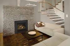 Direct Vent Fireplace Insert by Gas Fireplace Insert Ebay