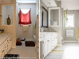 Before And After Bathrooms Bathroom Diy Bathroom Remodel Before And After Fresh Home