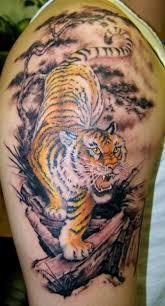 large tiger on shoulder and bicep tattoos