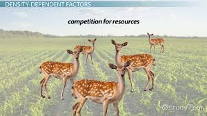 factors that lead to population change u0026 density video u0026 lesson