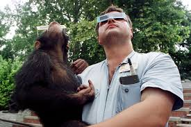 how do animals react to an eclipse depends if they u0027re smart