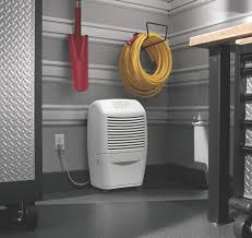 Best Basement Dehumidifier Reviews by How To Reduce Basement Condensation The Dehumidifier Experts