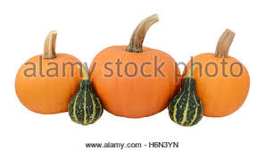 autumn background ornamental gourds and pumpkins stock photo