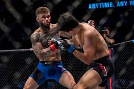 five reasons why cody garbrandt will win ufc bantamweight