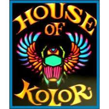 house of kolor true fire flames stencils templates w dvd 2oz paint kit