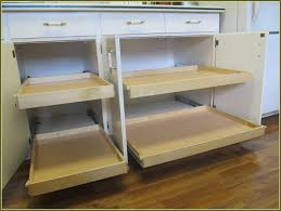 Kitchen Cabinets Canada Shop Pull Out Trash Cans At Lowes Inside Elegant Pull Out Drawers
